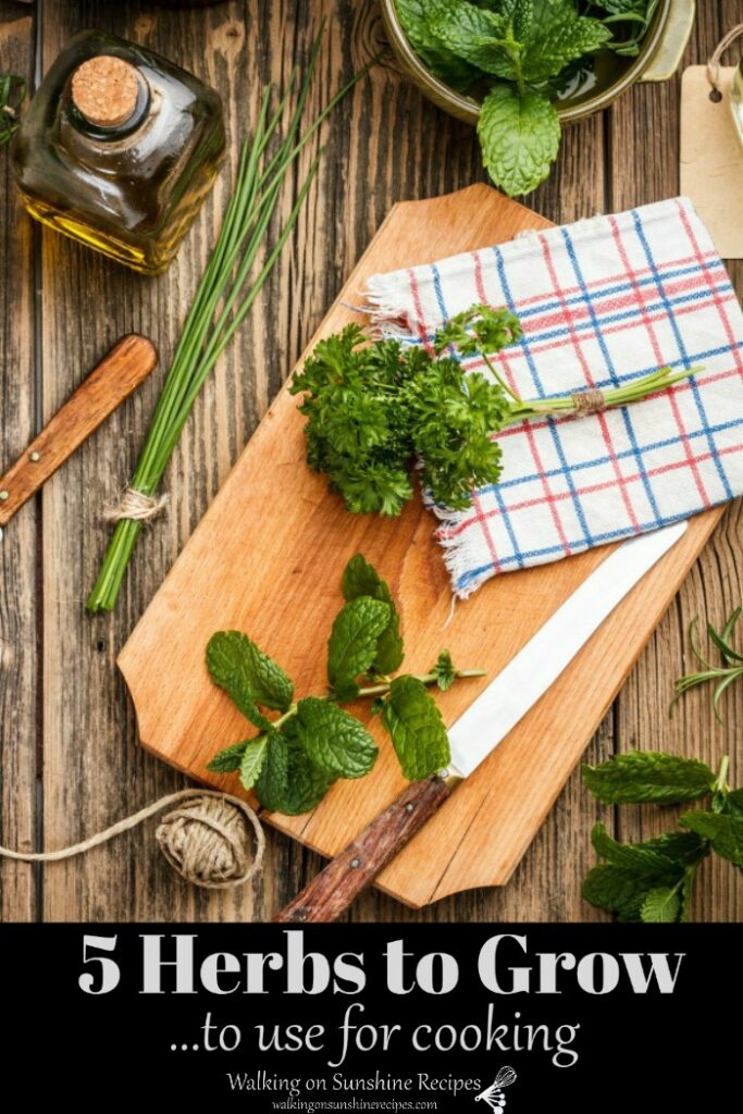 Herbs on cutting board with knife, dish towel and string.