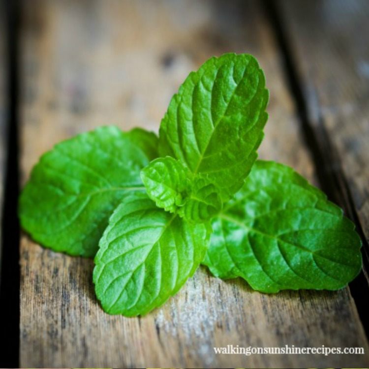 Sprig of mint on cutting board.