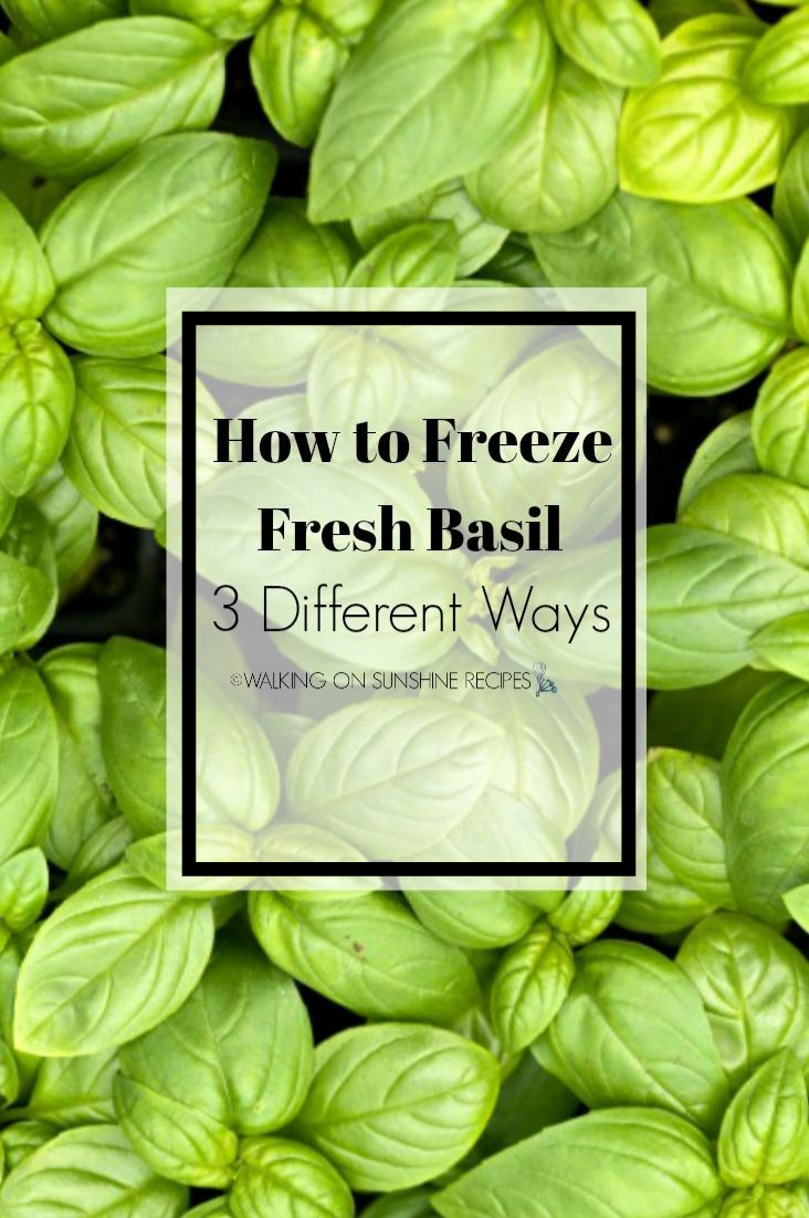 Fresh Basil Closeup and freezing tips.