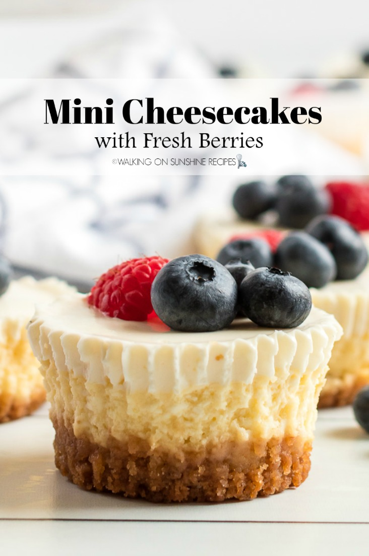 Closeup of mini cheesecakes with blueberries and raspberries. Made with a graham cracker crust.