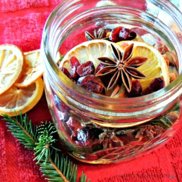 dried fruit, lemons, oranges, star anise in mason jar with pine twigs for Christmas potpourri