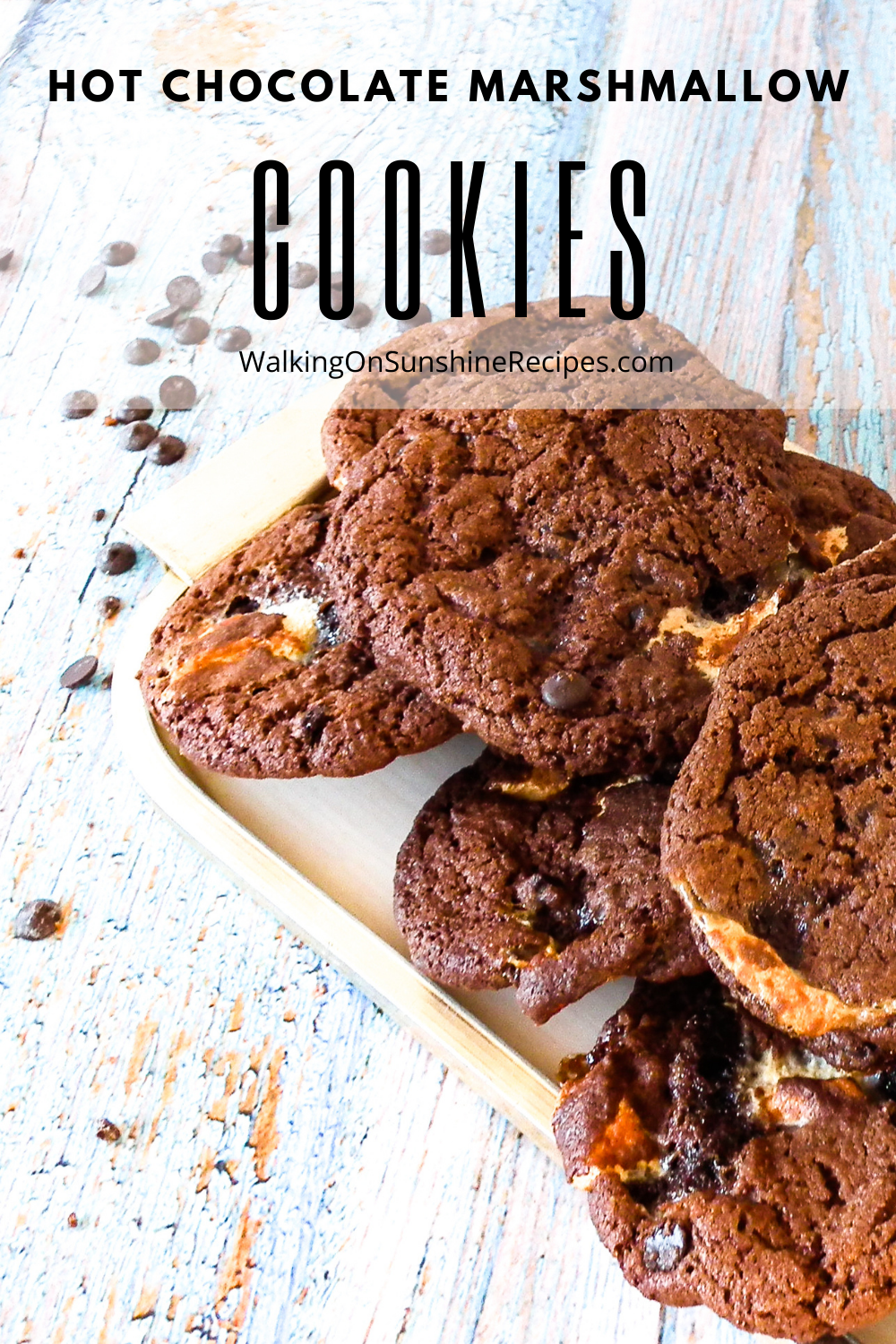 chocolate cookies made with hot chocolate mix and marshmallow bits.