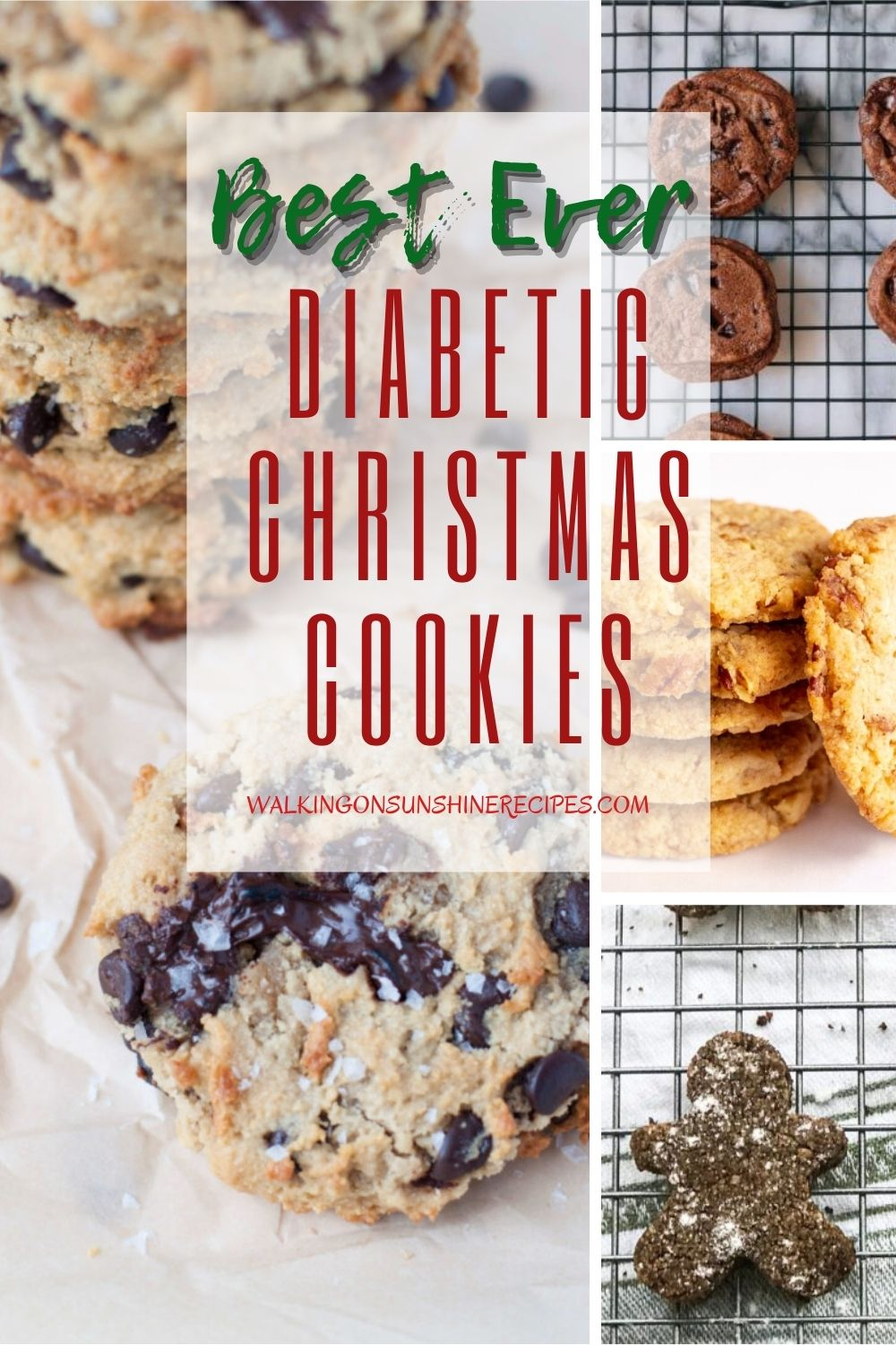 Cookies that are perfect to serve to diabetics for the holidays.