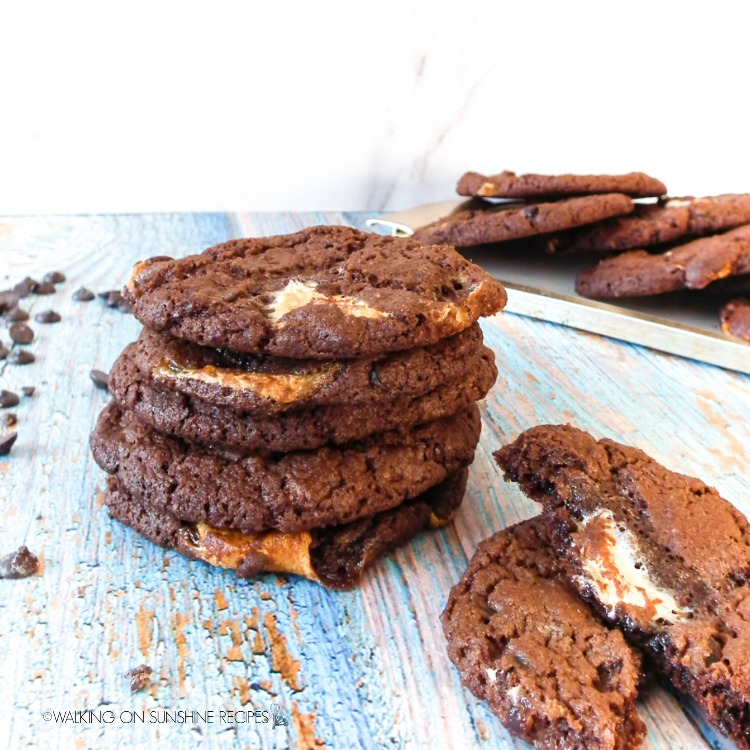chocolate marshmallow cookies on plate with chocolate chips in background.