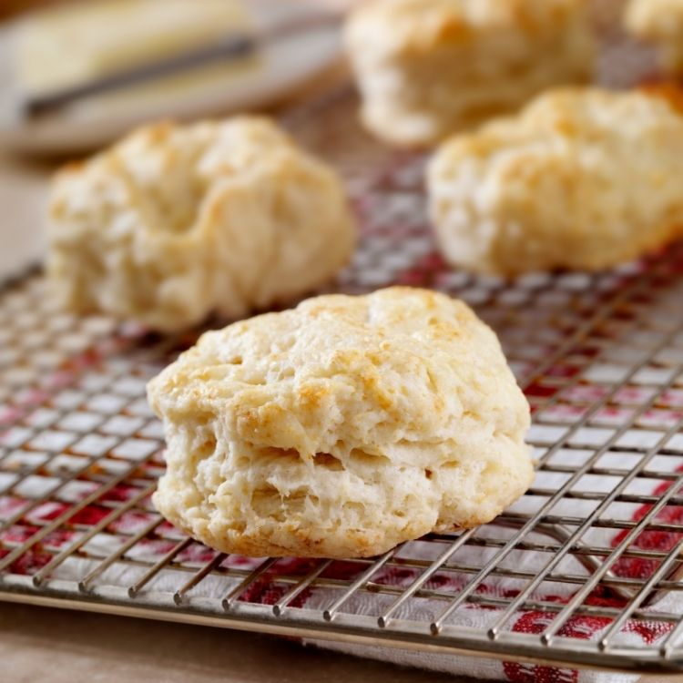 homemade biscuits without buttermilk