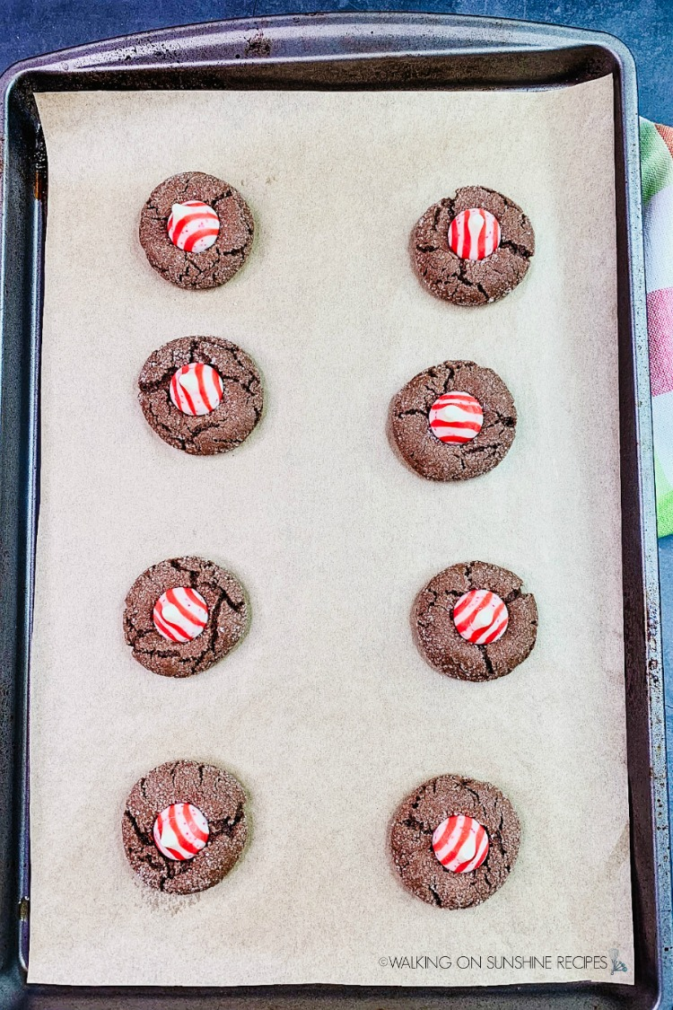 Baked Peppermint Christmas Cookies on baking tray