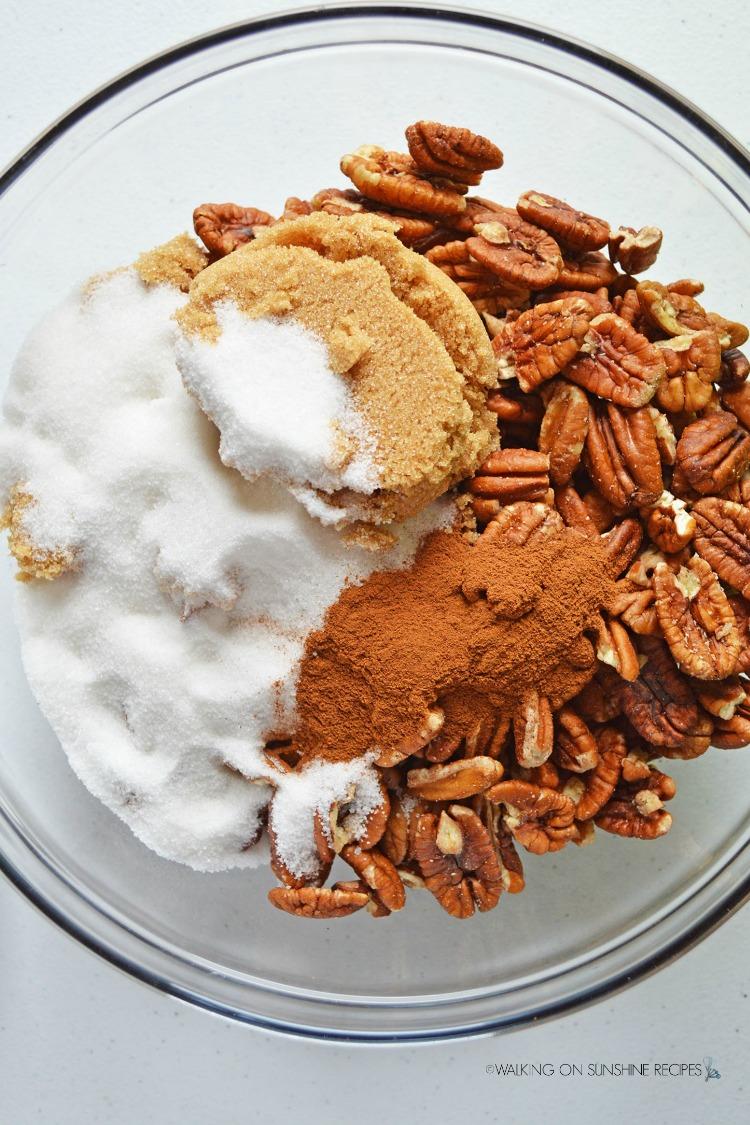 Sugar, Brown Sugar, Cinnamon and Pecans in Bowl