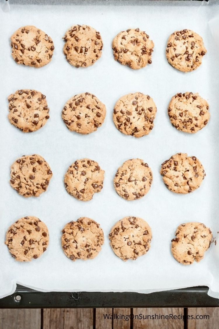 Fresh baked chocolate chip cookies on baking tray.