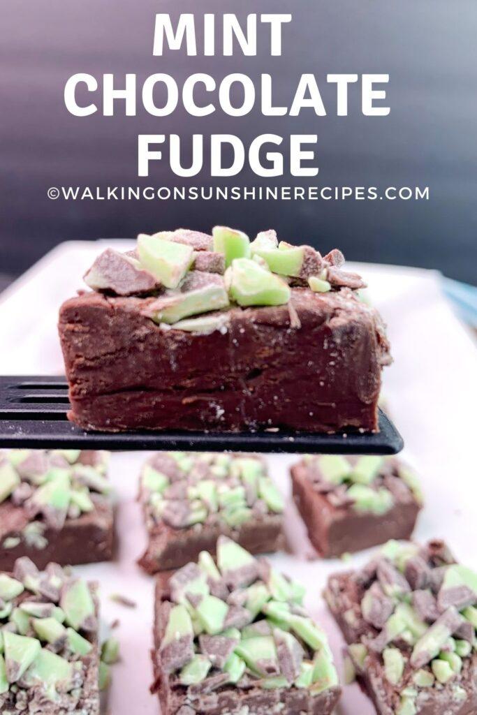 mint chocolate fudge on spatula.