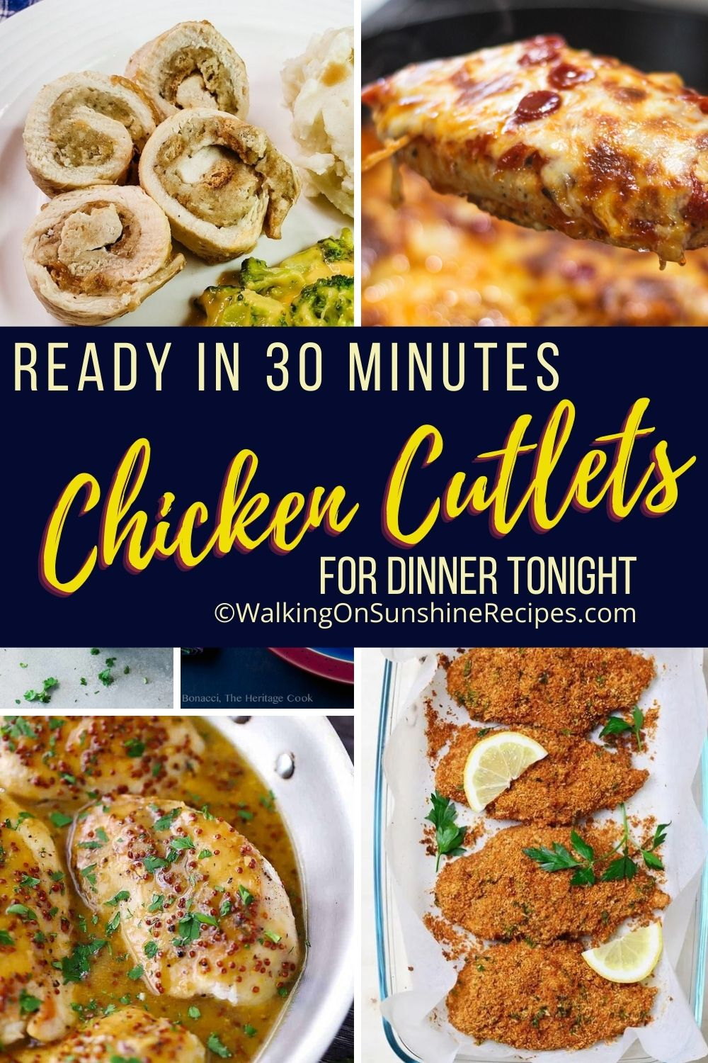 a collection of thin chicken cutlet recipes.