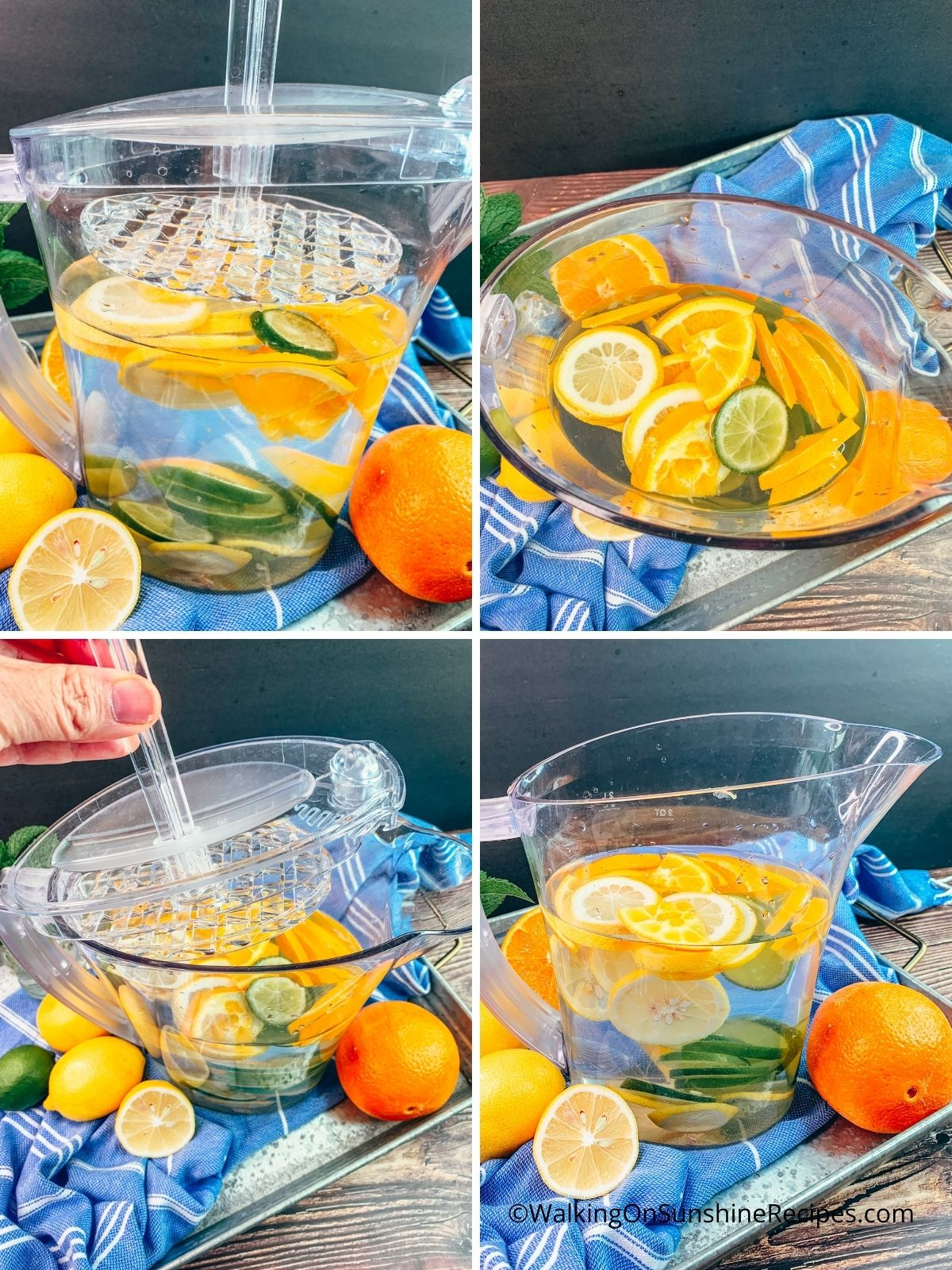 sliced fruit in immersion pitcher of water.