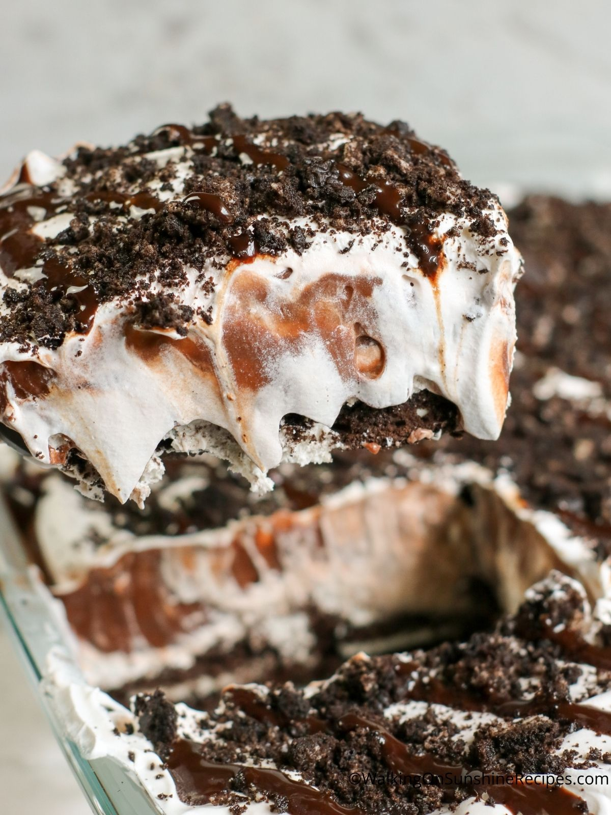 Gently lift pudding dessert on cake server.